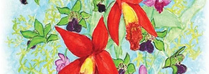 Sacramento Orchid Forum Fall Show